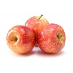 Fuji Apple 1Kg